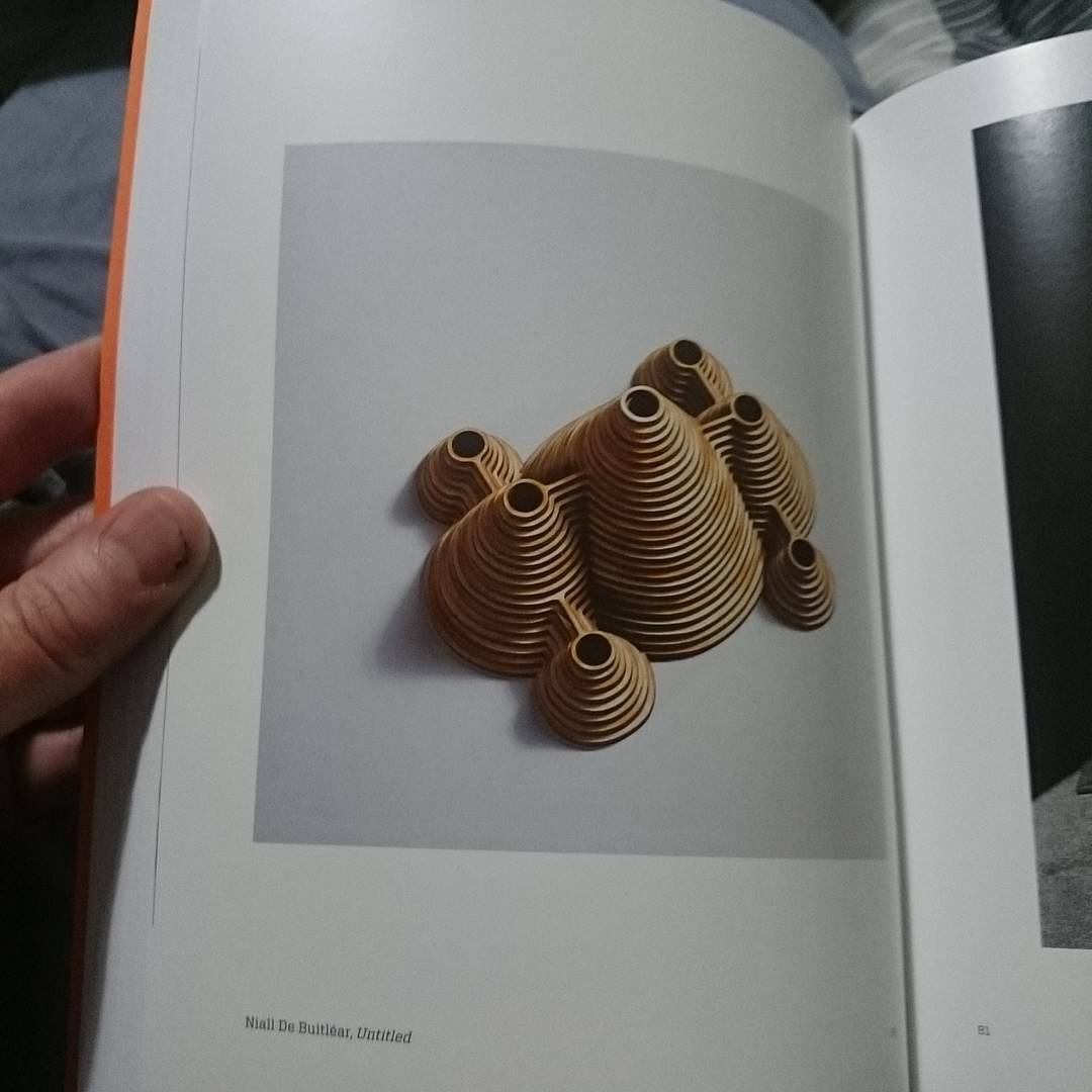 An untitled sculpture of mine made of laser cut plywood in the catalogue for the RHA's 186th Annual Exhibition.