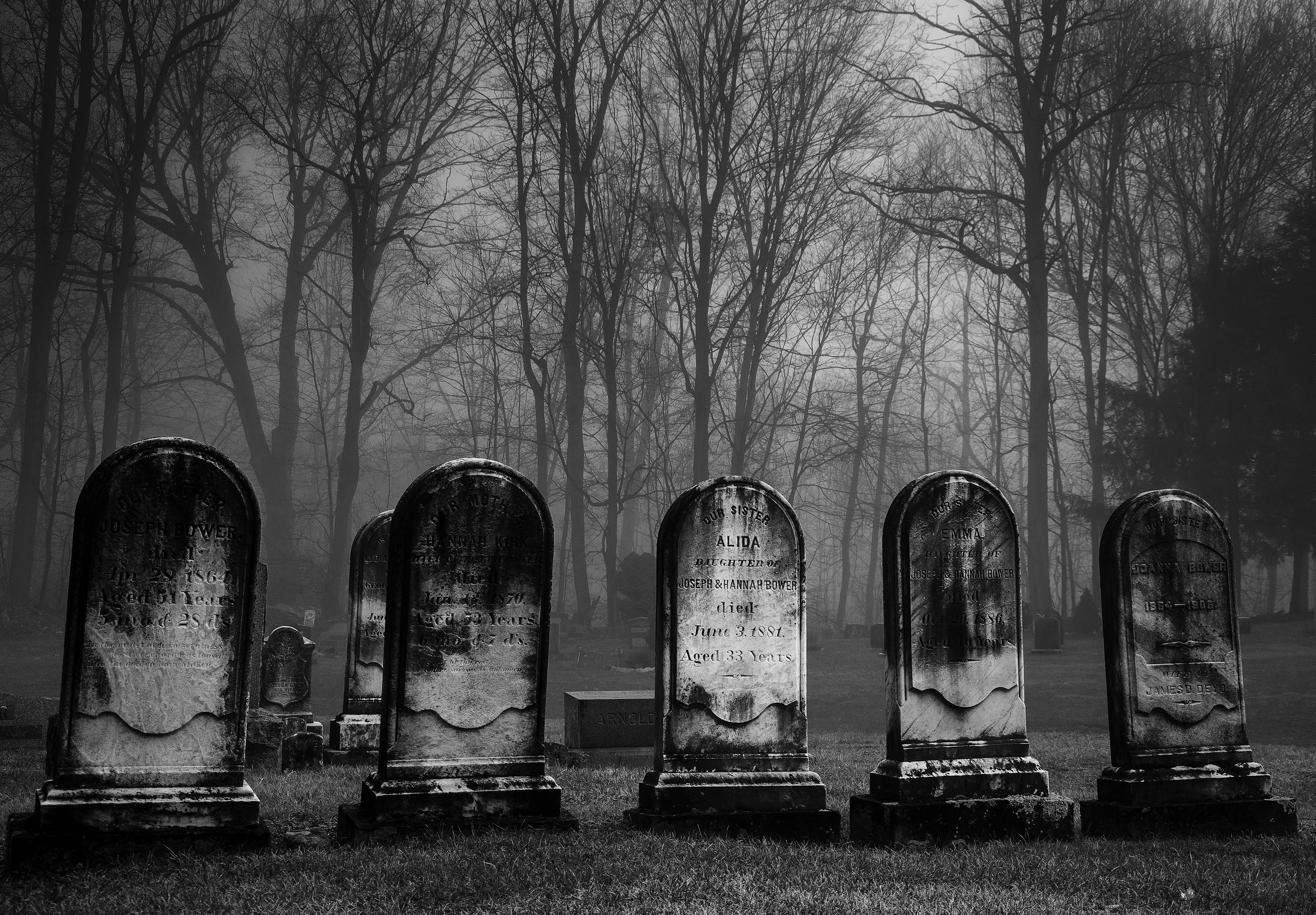 When I decided to go down the poet's walk, I purchased a thick used anthology of poetry. I started with the familiar names. I read Yeats, Wordsworth, Frost and Thomas, and Edgar Allen Poe. I was also inspired by a photograph that I shot on a wet, foggy morning. It's a black and white photo of a neat row of tombstones in a churchyard. One name was clearly visible on the center stone: Alida