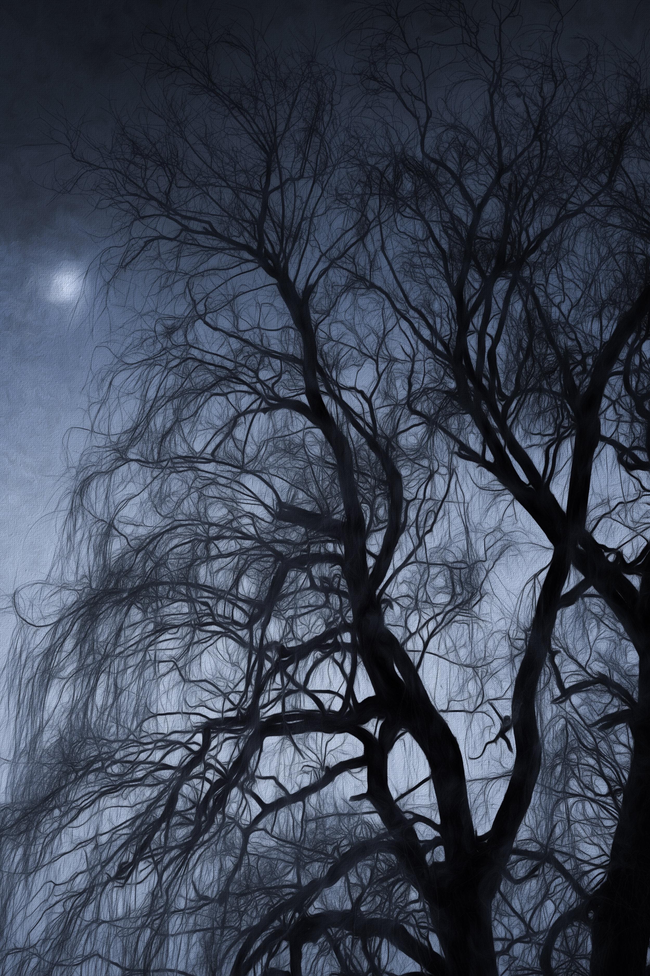 Moon Glow.jpg