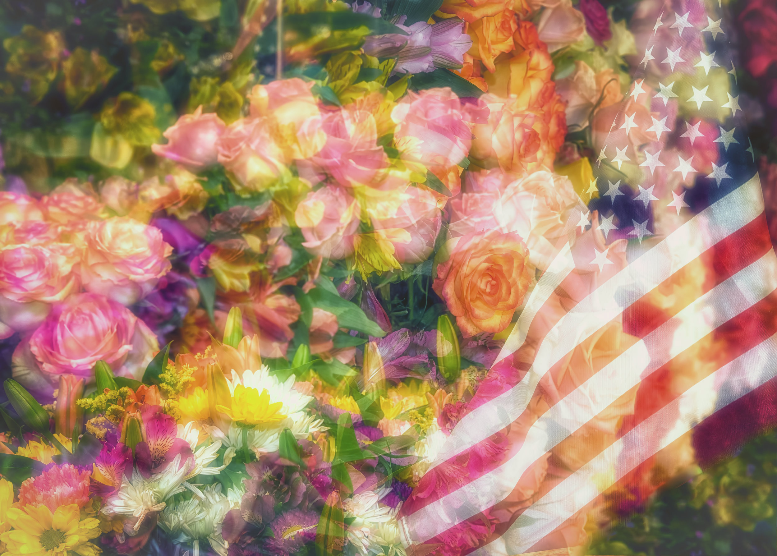 The flag on a bed of roses. Very much the idealized, romantic and preferred image of ourselves. I am writing on the eve of this year's holiday, when the current occupant of the White House plans to co-opt the traditional celebration of our nation's independence for political purposes. Just another affront to our national character. I've stopped counting how many have preceded it. American Democracy is under siege in 2019. It also occurred to me that we bring flowers to funerals as well.