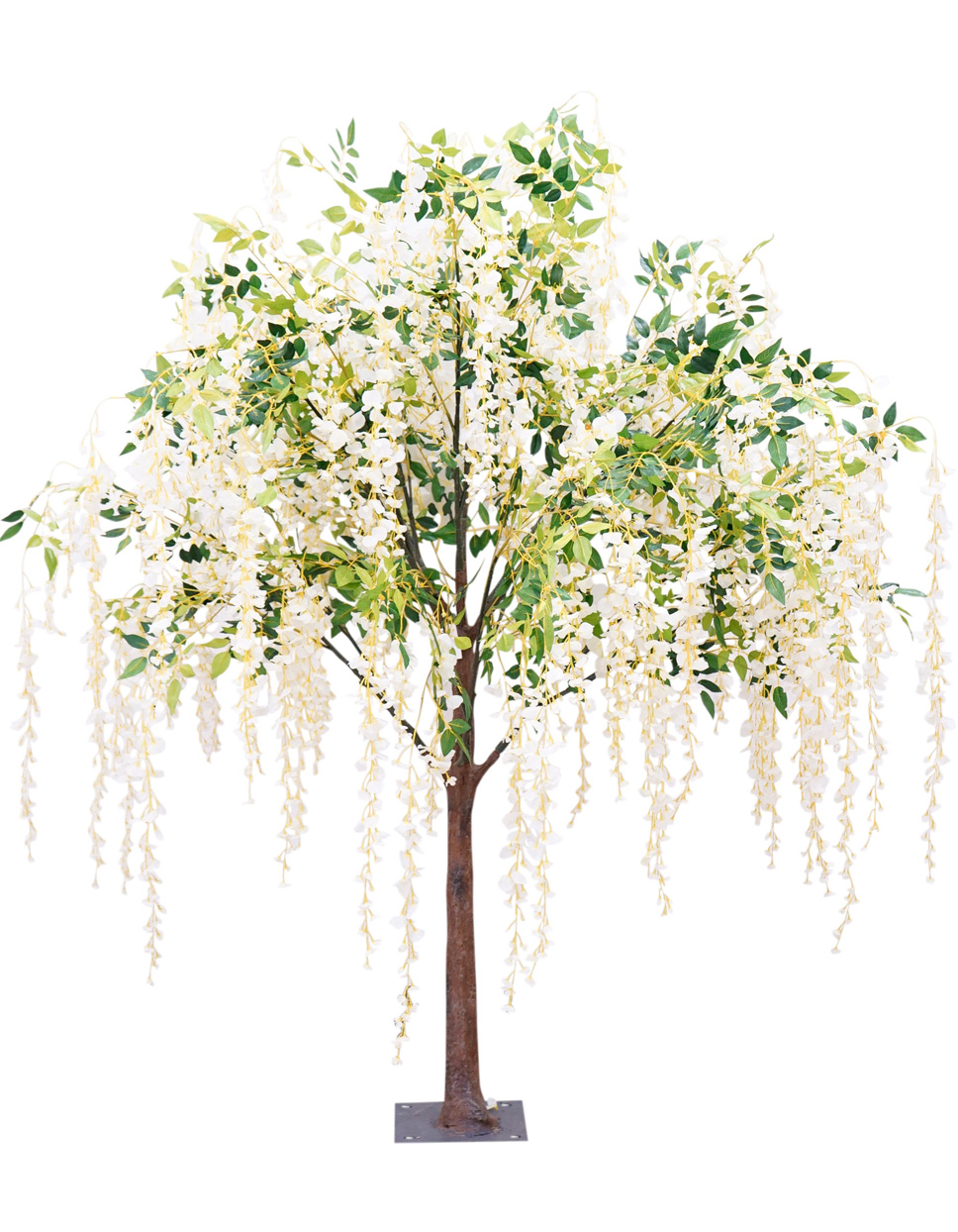 willowtree.png