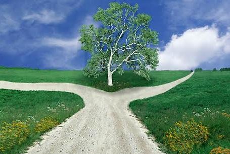 fork-in-road.jpg