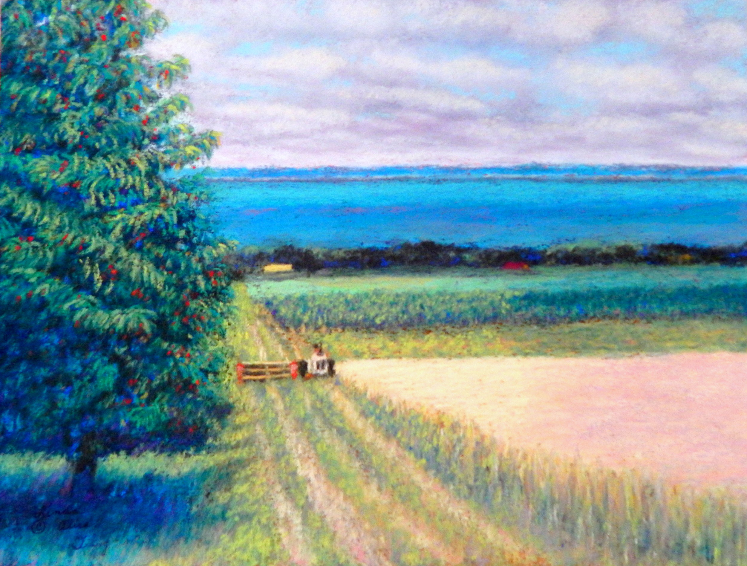 "LINDA ALICE DEWEY - LEELANAU'S RESOURCESIn the mid-1990s, I was in Leelanau for the summer, exploring Schaumburg Road on a beautiful July day, when I came upon this gorgeous scene. At the time, I was selling my photographs, matted, in several shops around the county, so I was equipped with my camera. I stopped to take a shot, and the farmer rode his combine (I think that's what it is—I'm not a farmer!), up to me. He got down from it, came over, and we chatted. He was nice enough to sign the Model Release I fortunately carried with me. It was Ed Kalchick. When I moved here as a year-round resident in 1999, that name would become familiar to me. I painted this from that photo a year ago and named the piece ""Leelanau's Resources."" I think it shows them all. The piece is not large, just 9 x 12, and I have it listed at $350, retail. It is pastel on artists' sandpaper, my favorite medium."