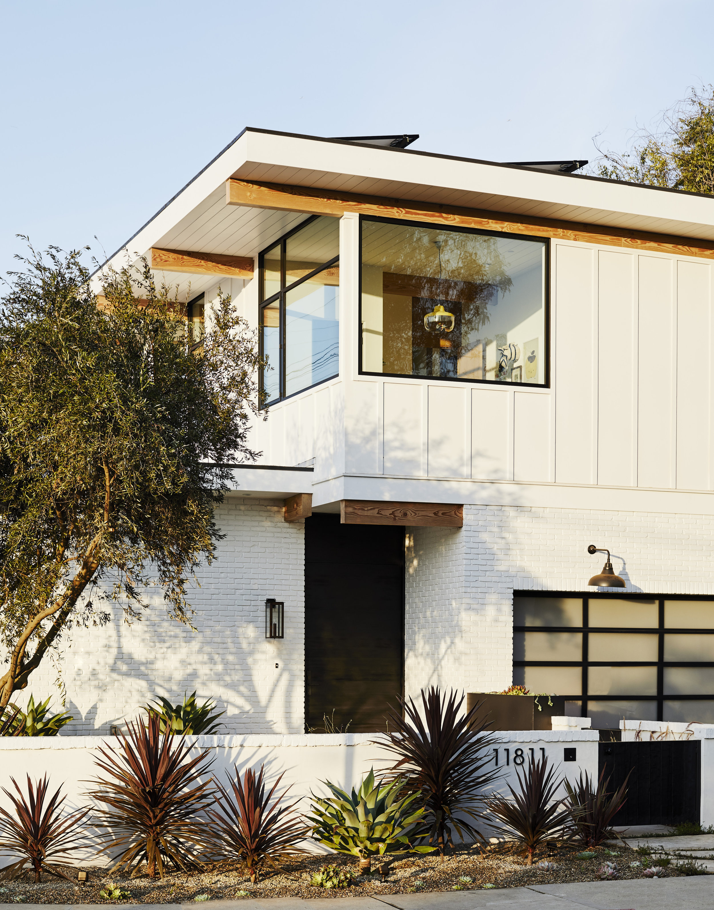 scout_and_nimble_california_home1.jpg