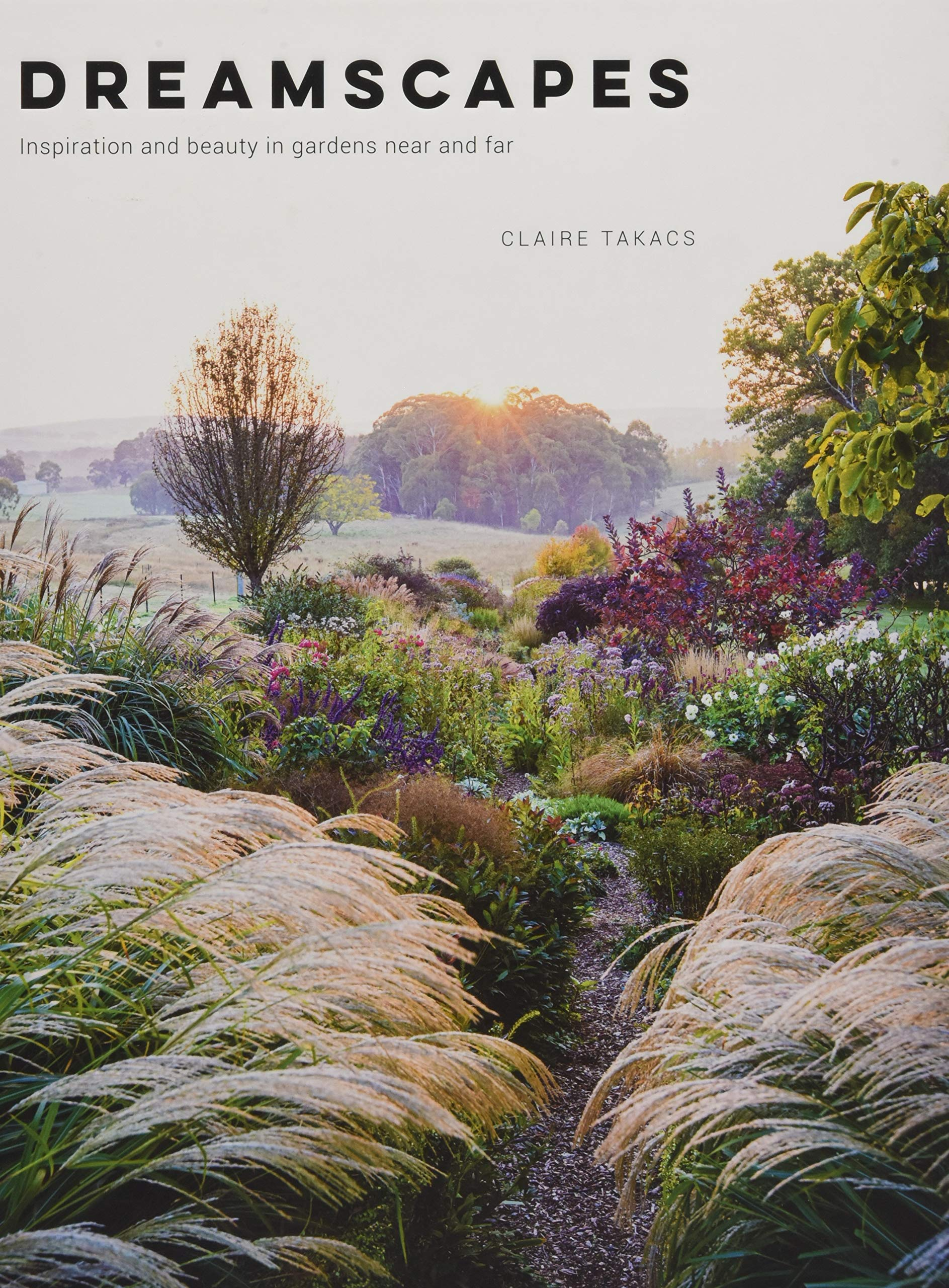 $32.26 • Dreamscapes By: Claire Takacs