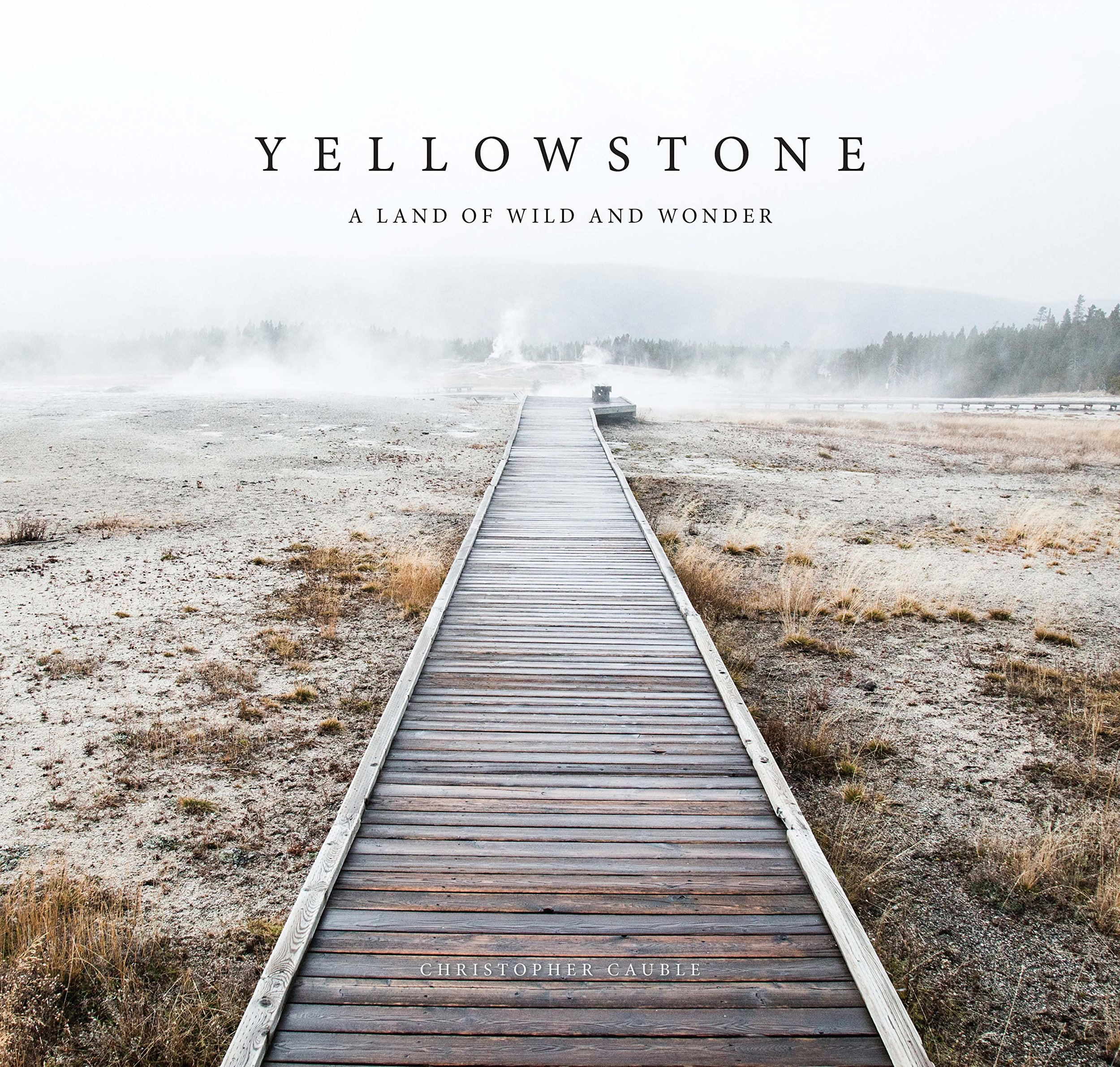 $19.96 • Yellowstone By: Christopher Cauble