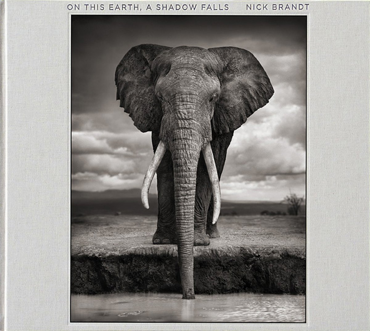 $91.86 • On This Earth, A Shadow Falls  By: Nick Brandt