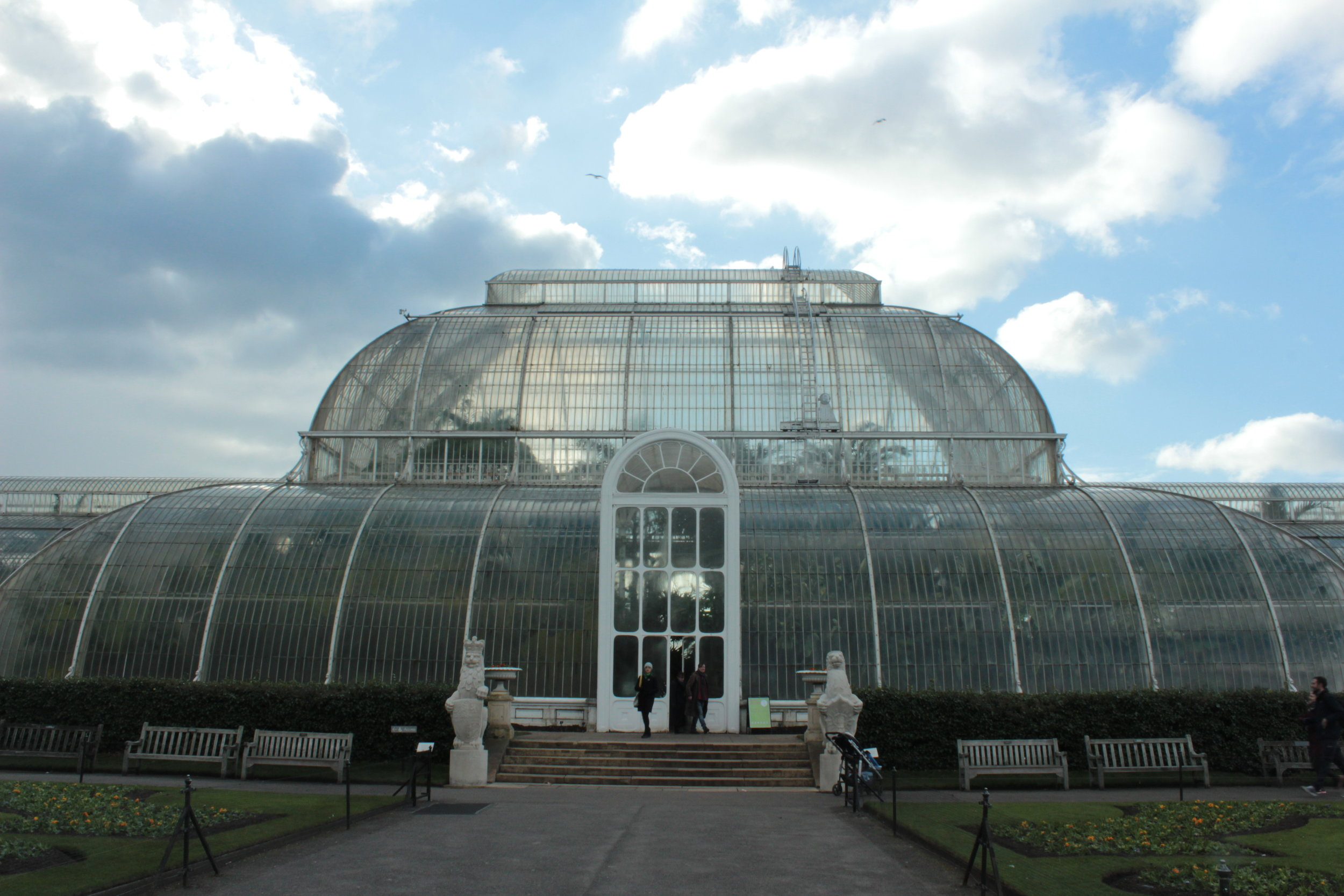 Adventures at Kew - March 8th, 2018