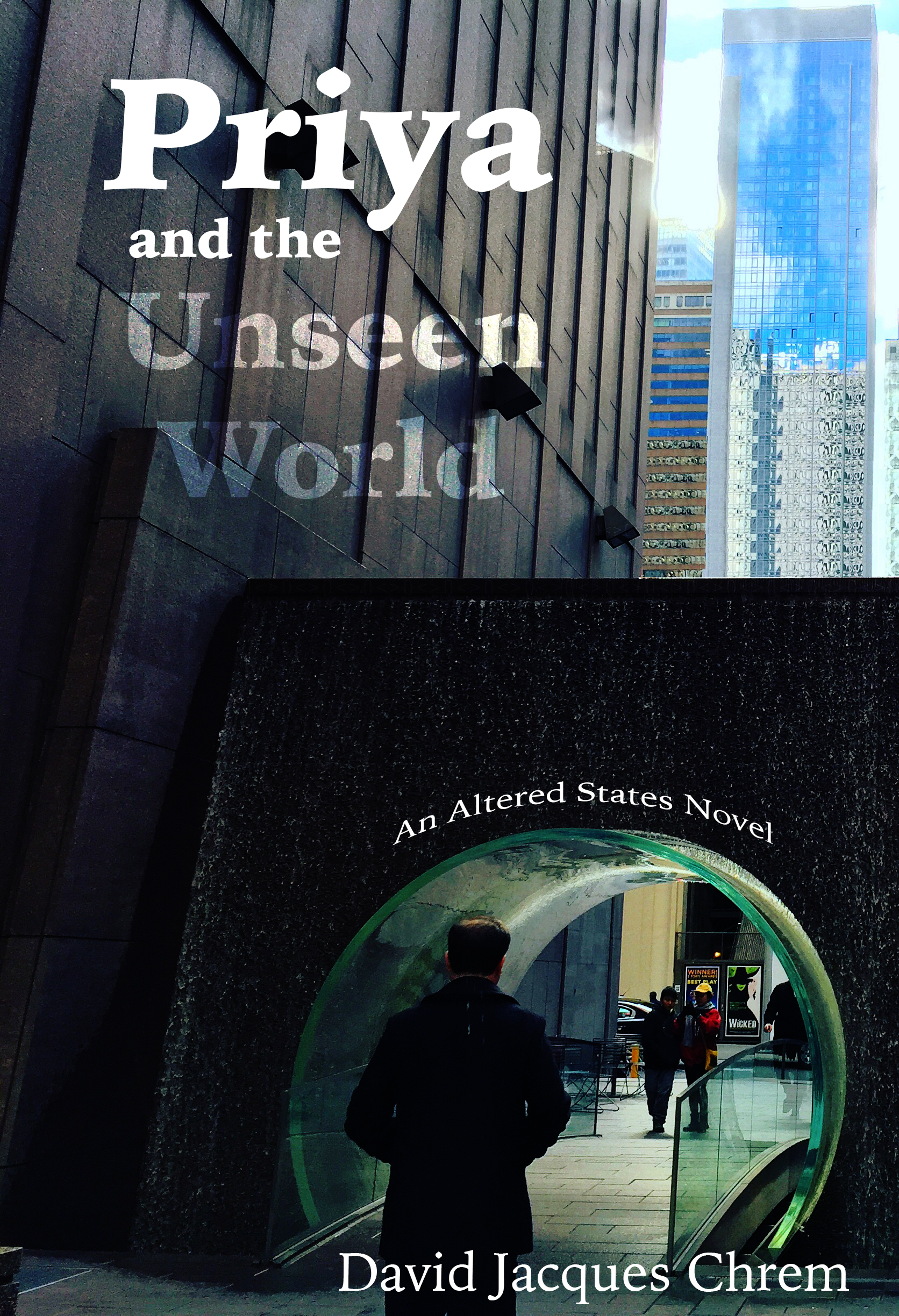 Priya and the Unseen World cover art
