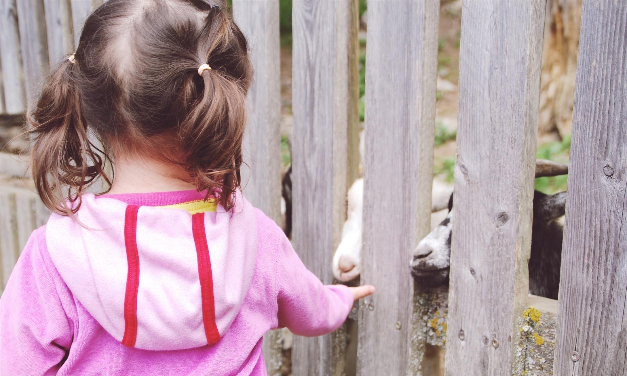 zaubervilla-ausflug-oekopark-14.jpg