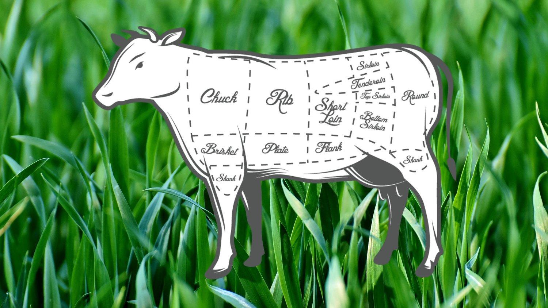 grass beef butcher chart.jpg