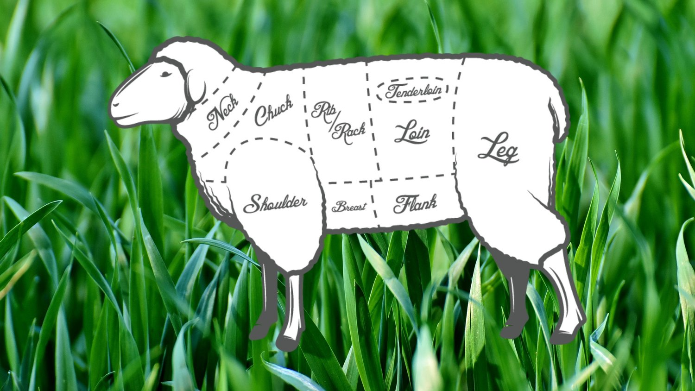 grass sheep butcher chart.jpg