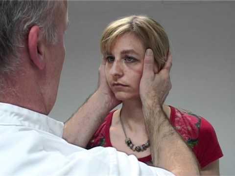 Halmagyi Curthoys rapid head impulse test vestibuloocular reflex