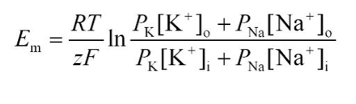 Goldman equation