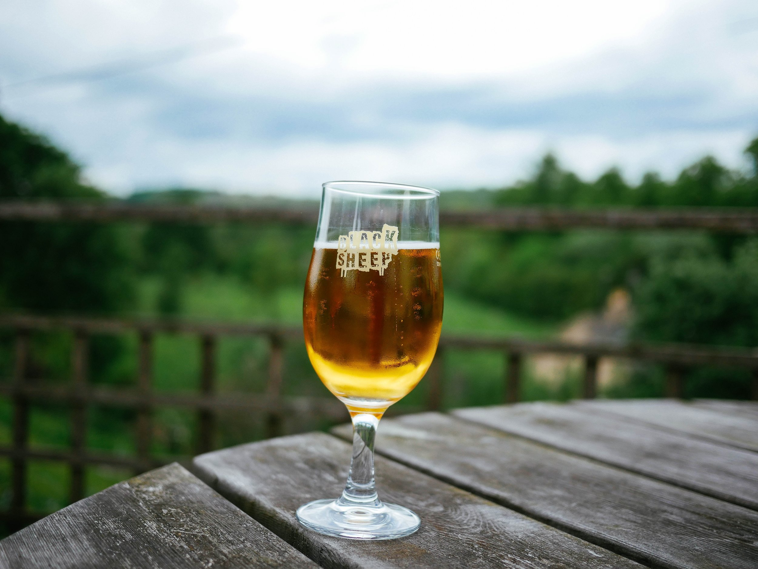 """what you get when you search """"fancy beer"""" on  unsplash.com"""