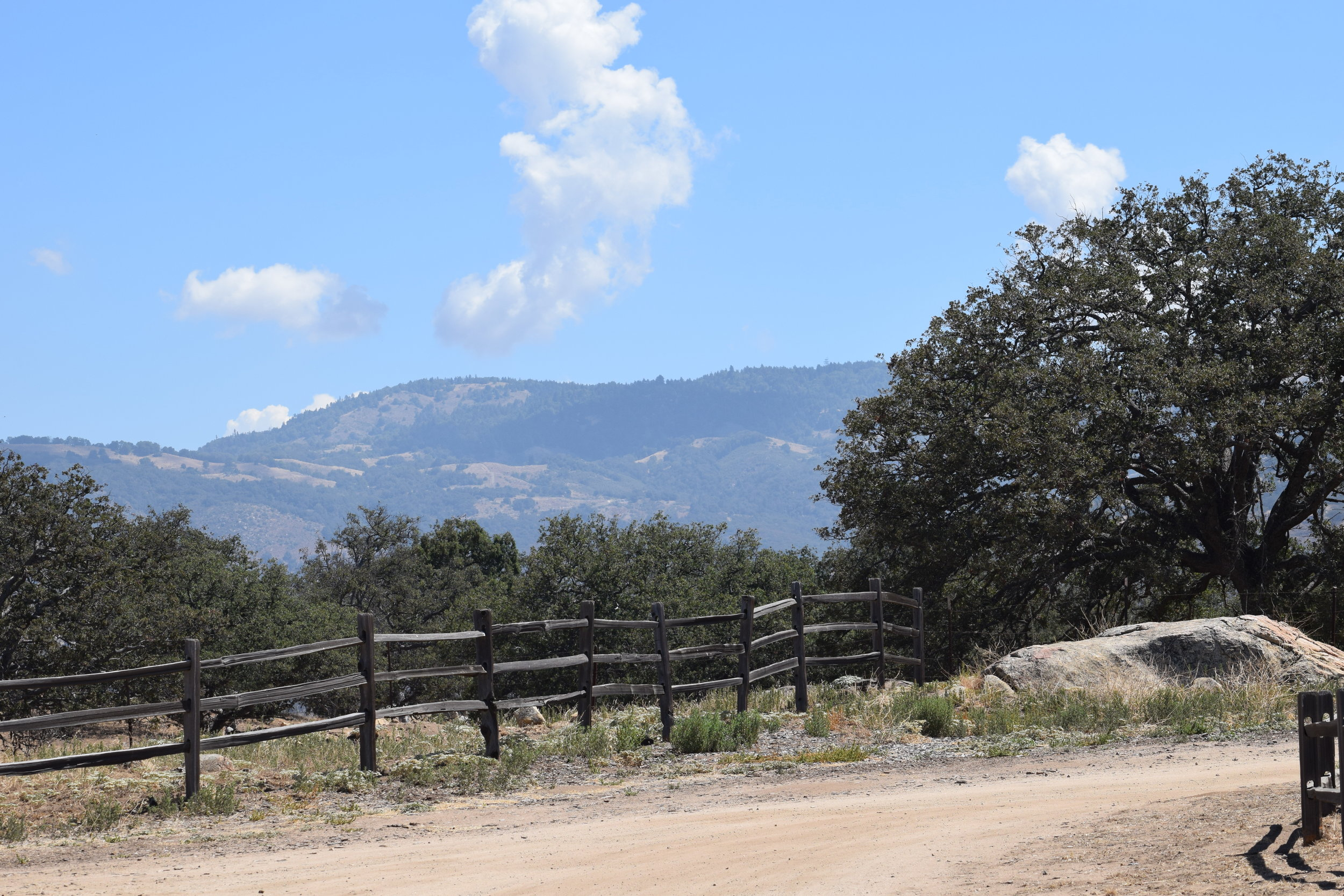 Santa Ysabel - For those who enjoy nature and the outdoors, check out the area's hiking trails — including the popular Santa Ysabel East and West County Preserves and Inaja Memorial Park, which have miles of trails and fabulous wildlife viewing opportunities.