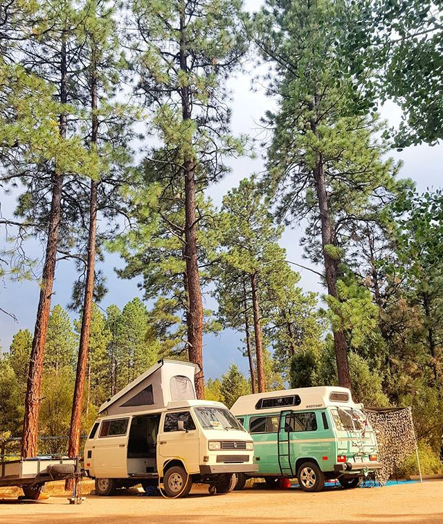 Registration is NOW OPEN! Prepare your vans & mark your calendars for Westyfest 2019, three days of awesome van-camping labor day weekend! Jump over to our profile and click on the link for all the events and to learn more about our intimate van gathering in southwestern Colorado . . . #wtf2019 #westyfest #westfalia #vwwestfalia #campervanlife #vwvanagon #vwbus #vwvan #campout #swco #durangocolorado #vanagonlife #vanagonlove #vwt3 #vwsyncro #vwvanagonwestfalia