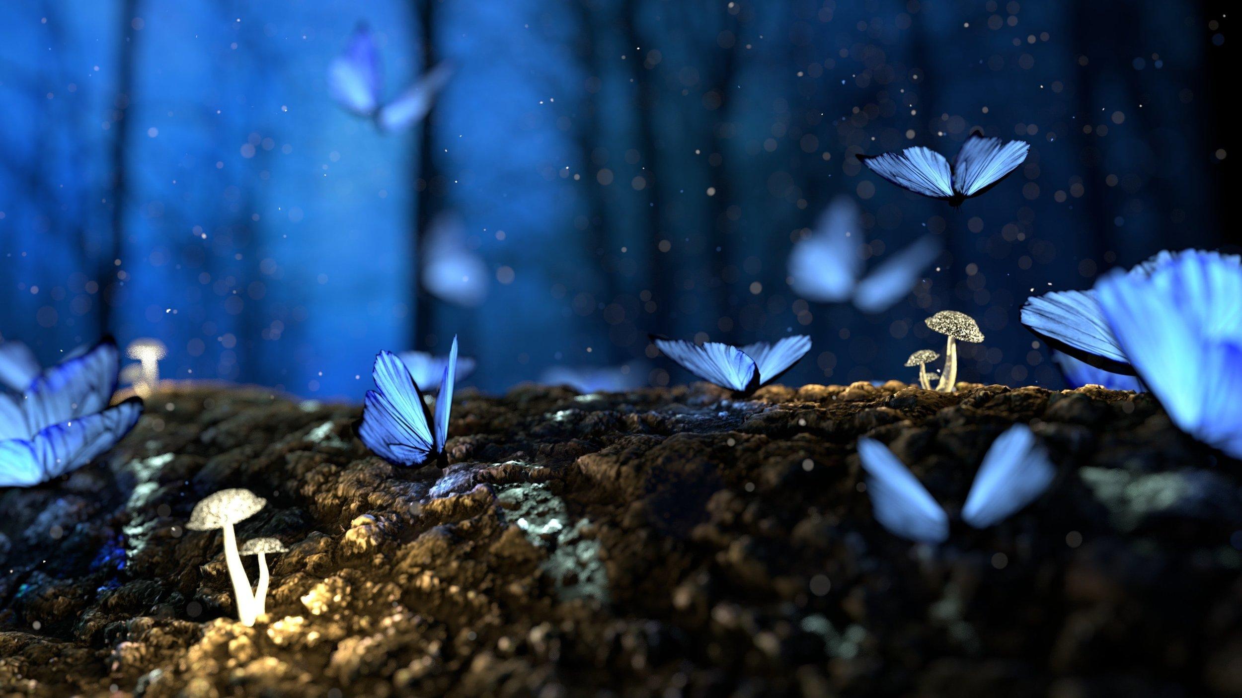 Blue butterflies indicate Hope