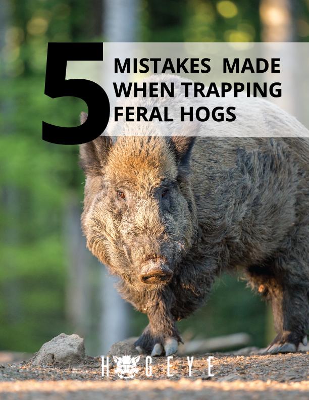 5-Feral-Hog-Mistakes-v.5.png