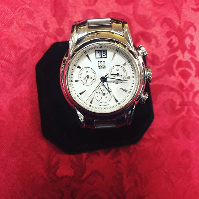 ESQ Swiss Stainless Steel Men's Watch Brand New Battery $149 210-267-1674