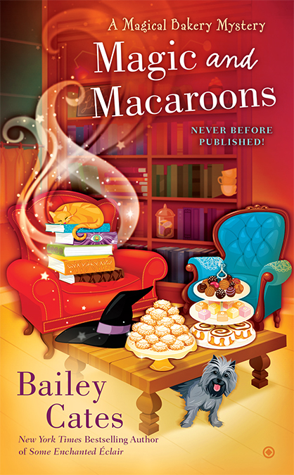MagicMacaroons_2.jpg
