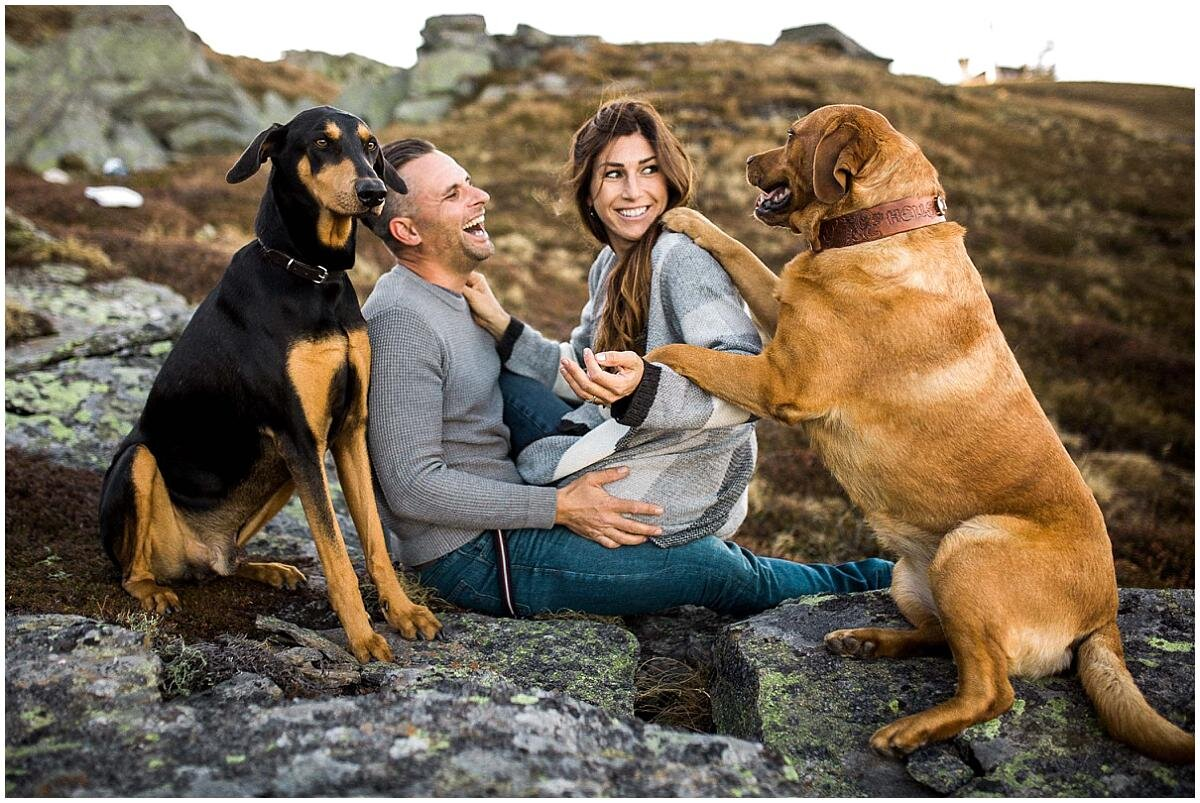 engagement-photos-with-dogs