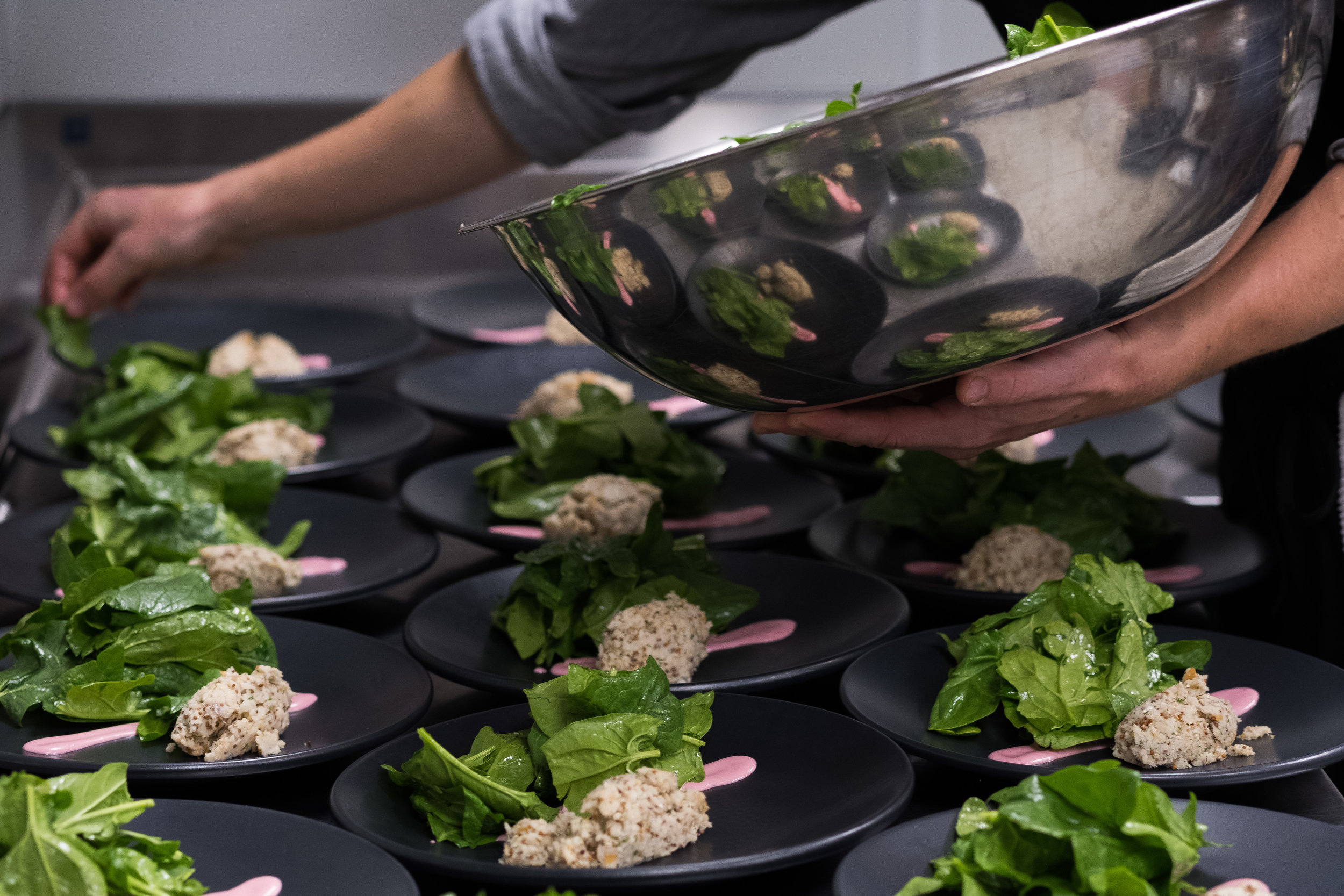 Plating Salad_.jpg