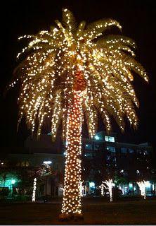 7f30561044a579f5e8f12eea50c51e9a--tropical-christmas-beach-christmas.jpg