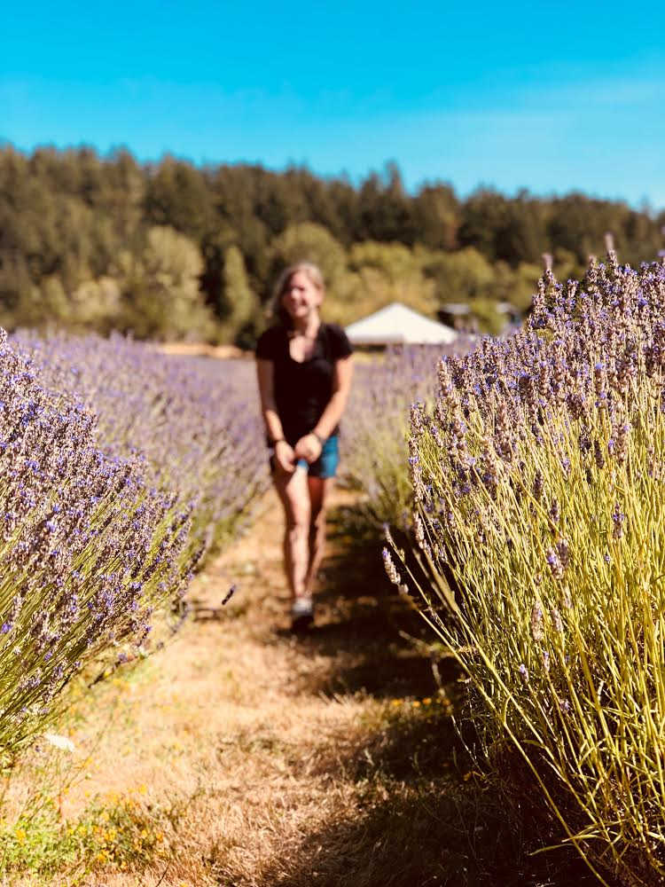 The scent of lavender often instills a sense of peacefulness.