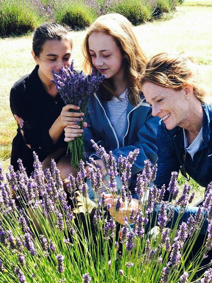The scent of lavender is known for its calming effects.