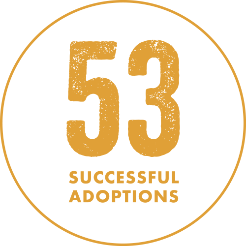 badge-53adoptions.png