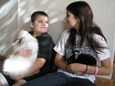 south-park-good-samaritan-fund-families-pets (1).jpg