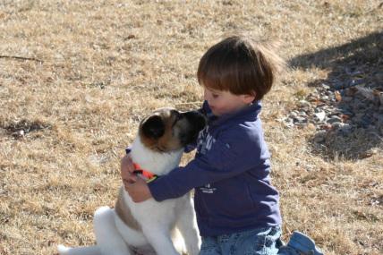 south-park-good-samaritan-fund-families-pets (1).jpeg