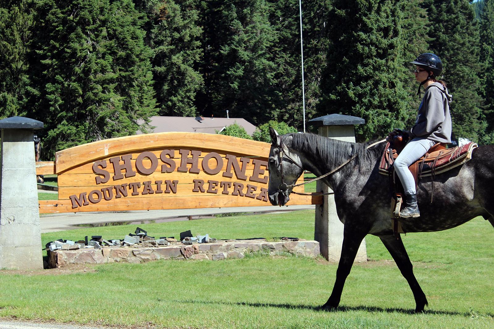 Shoshone horse.jpg