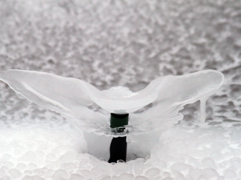 Don't let your sprinklers freeze over, click below to schedule your winter blowout -