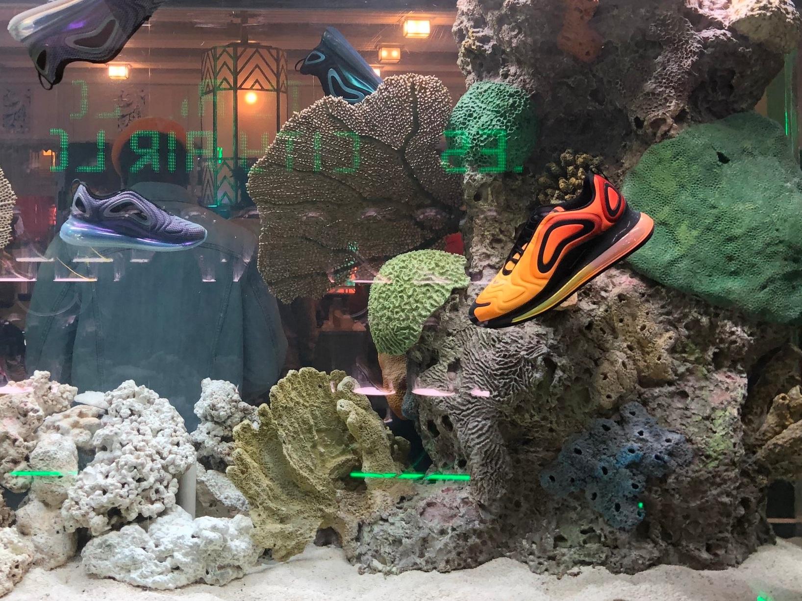 Fish tank of sneakers.