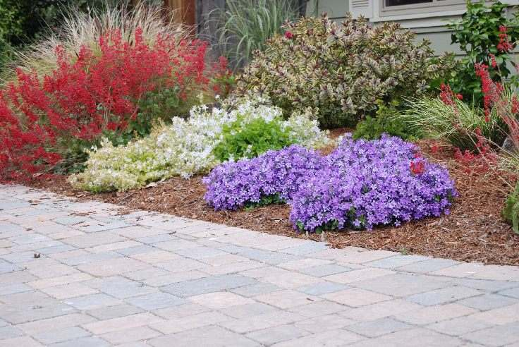 Paver Driveway and Landscape.JPG