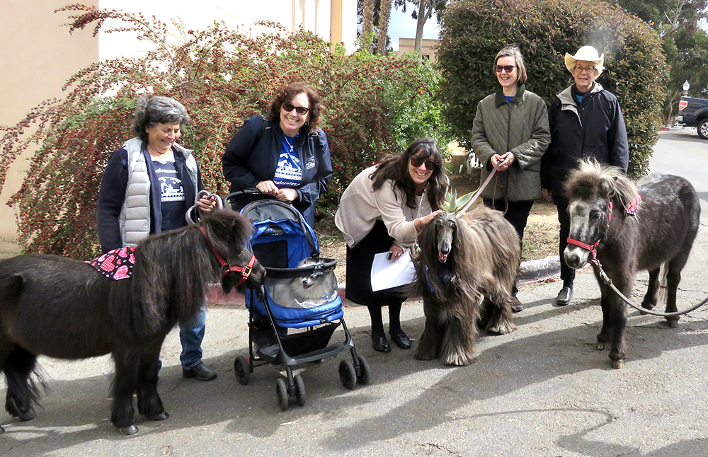 For Valentine's Day we got to visit Balboa Park in San Diego, with some of our other pet friends and human staff members from the Helen Woodward Center.