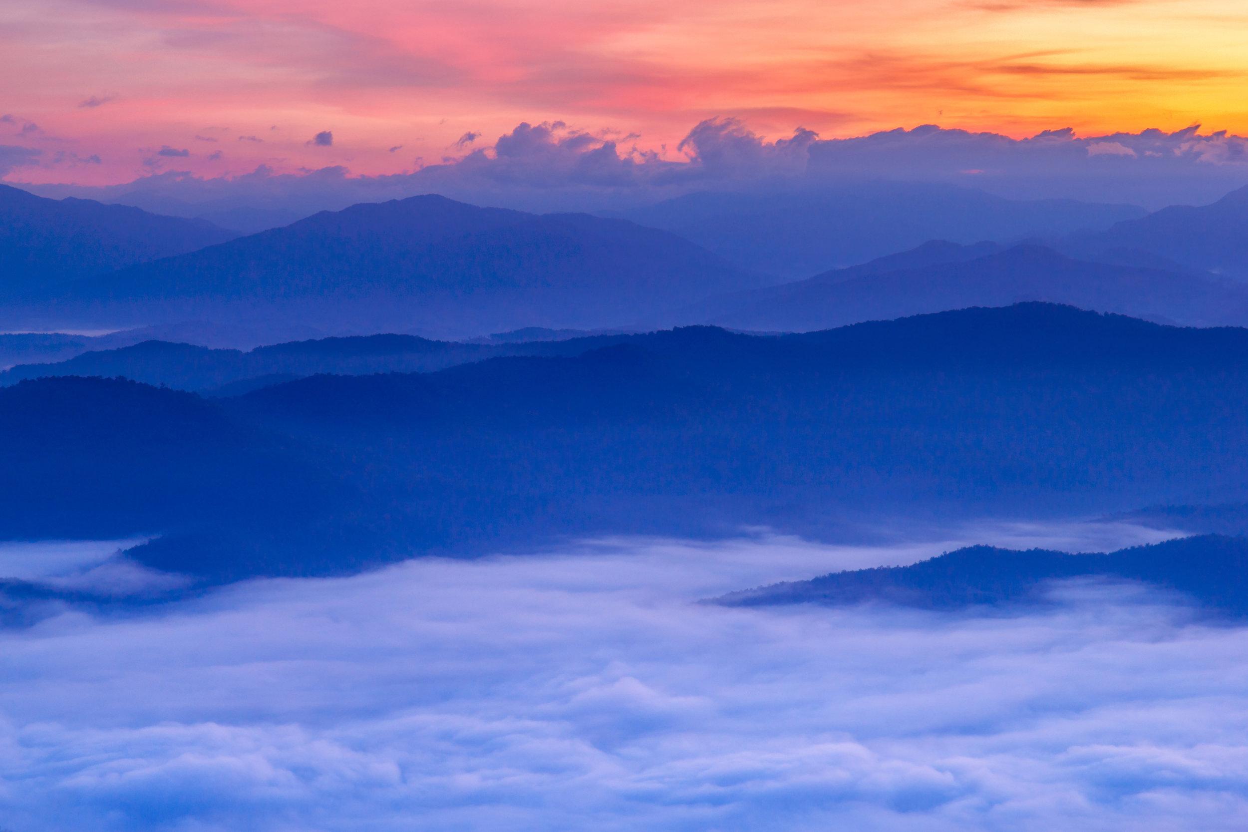 Your attitude Determines your altitude  -
