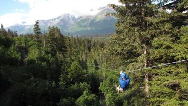 Zipline Tours in Alaska