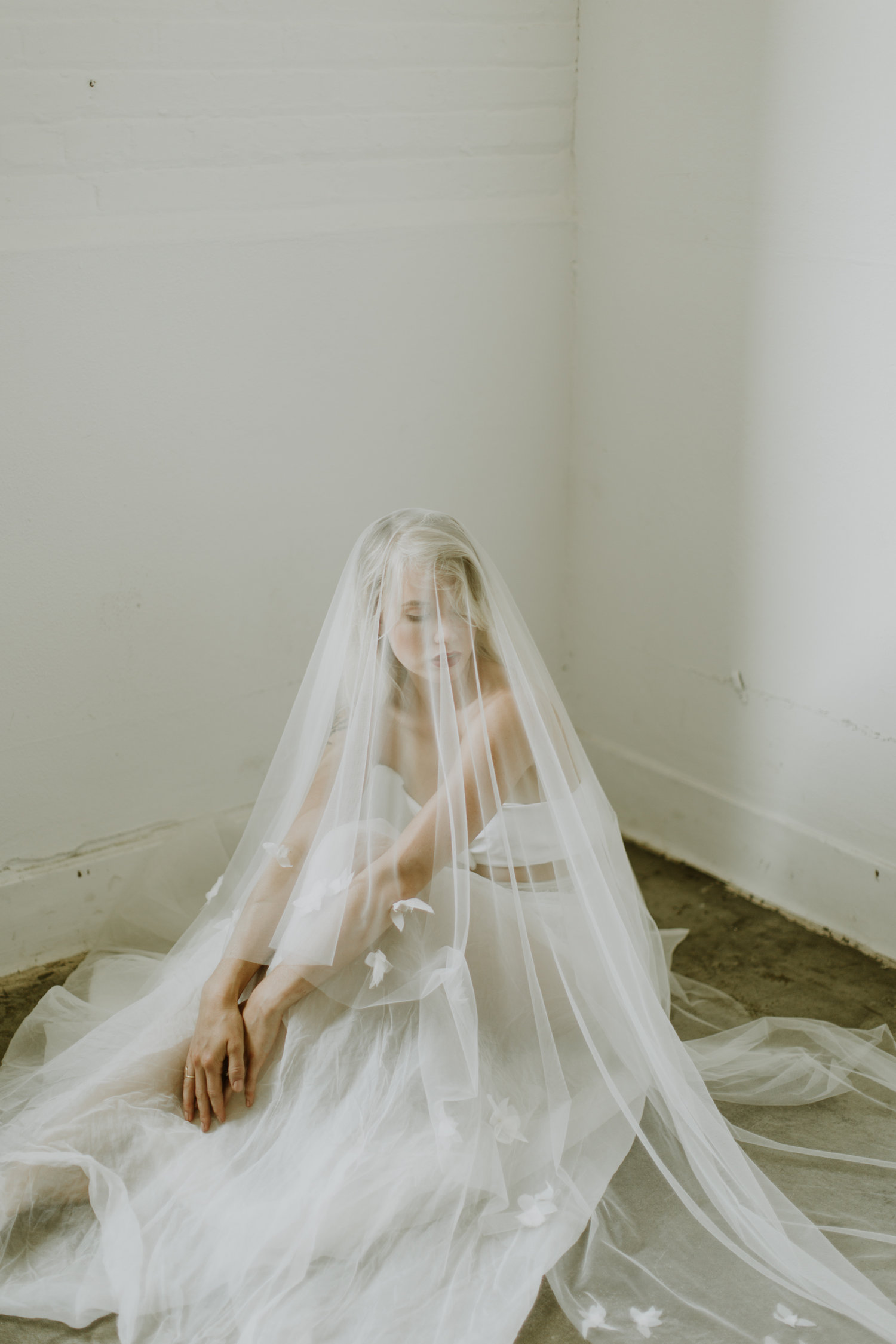 Cathedral Length Wedding Veil by A.B. Ellie