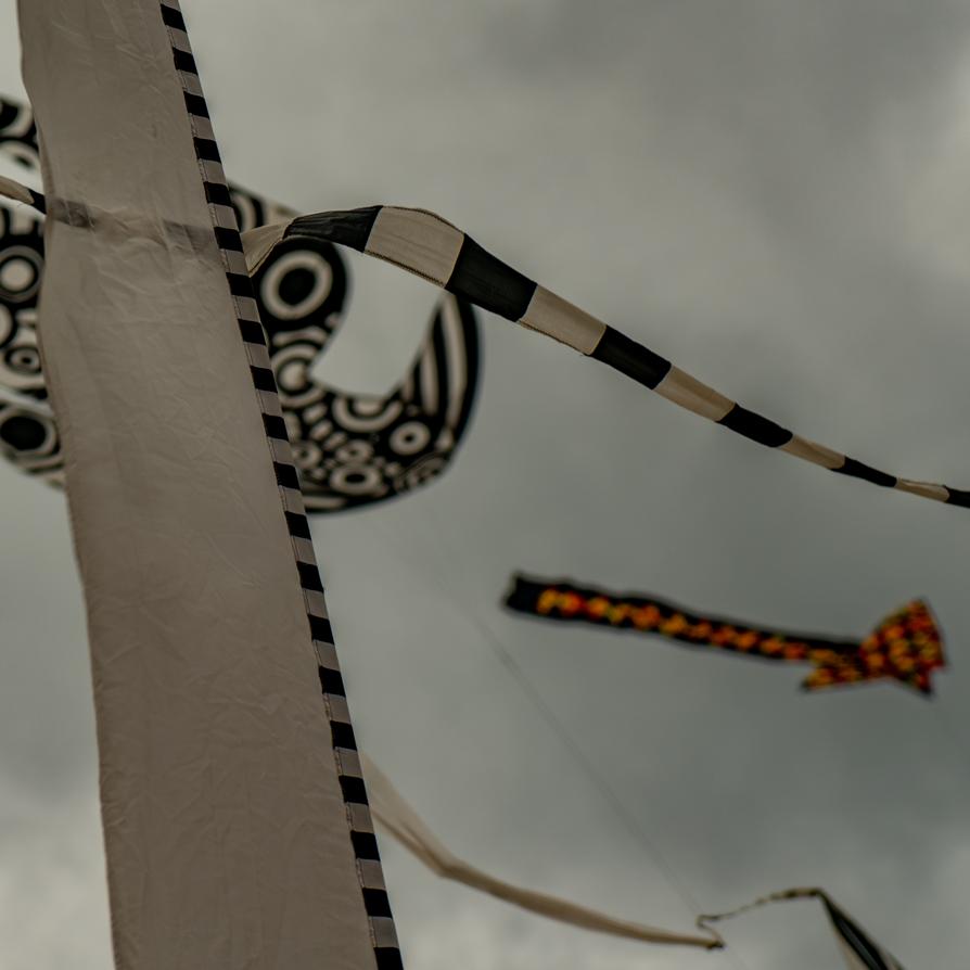 Kite-festival-2018---Solent-Sky-Services-Media-2018-00233.png