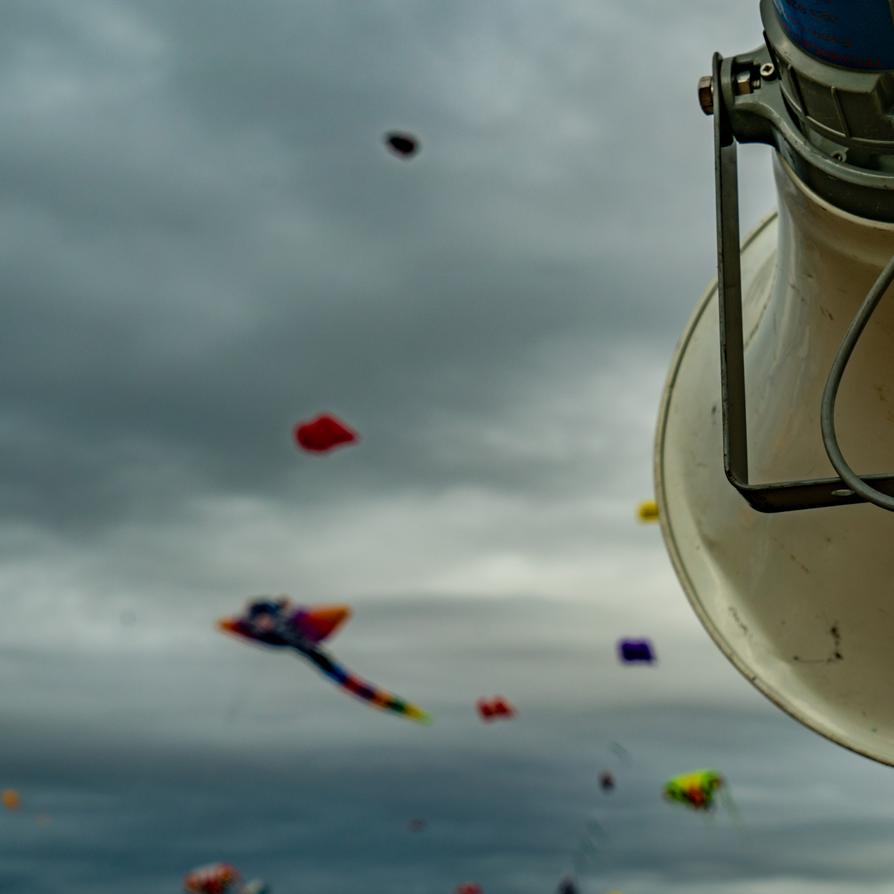 Kite-festival-2018---Solent-Sky-Services-Media-2018-00358.png