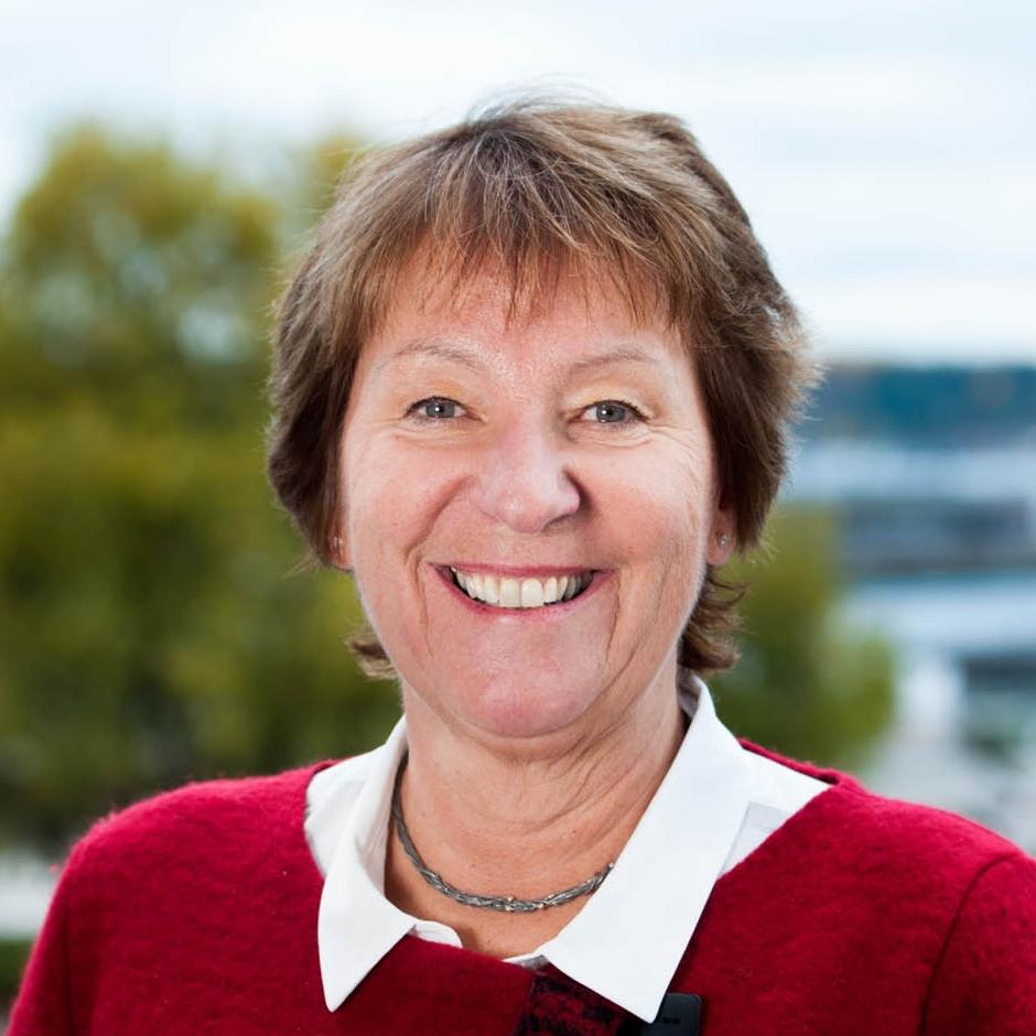 Ordfører Marianne Borgen (SV) deltar i debatt.