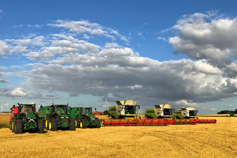 Jordbruket.jpg