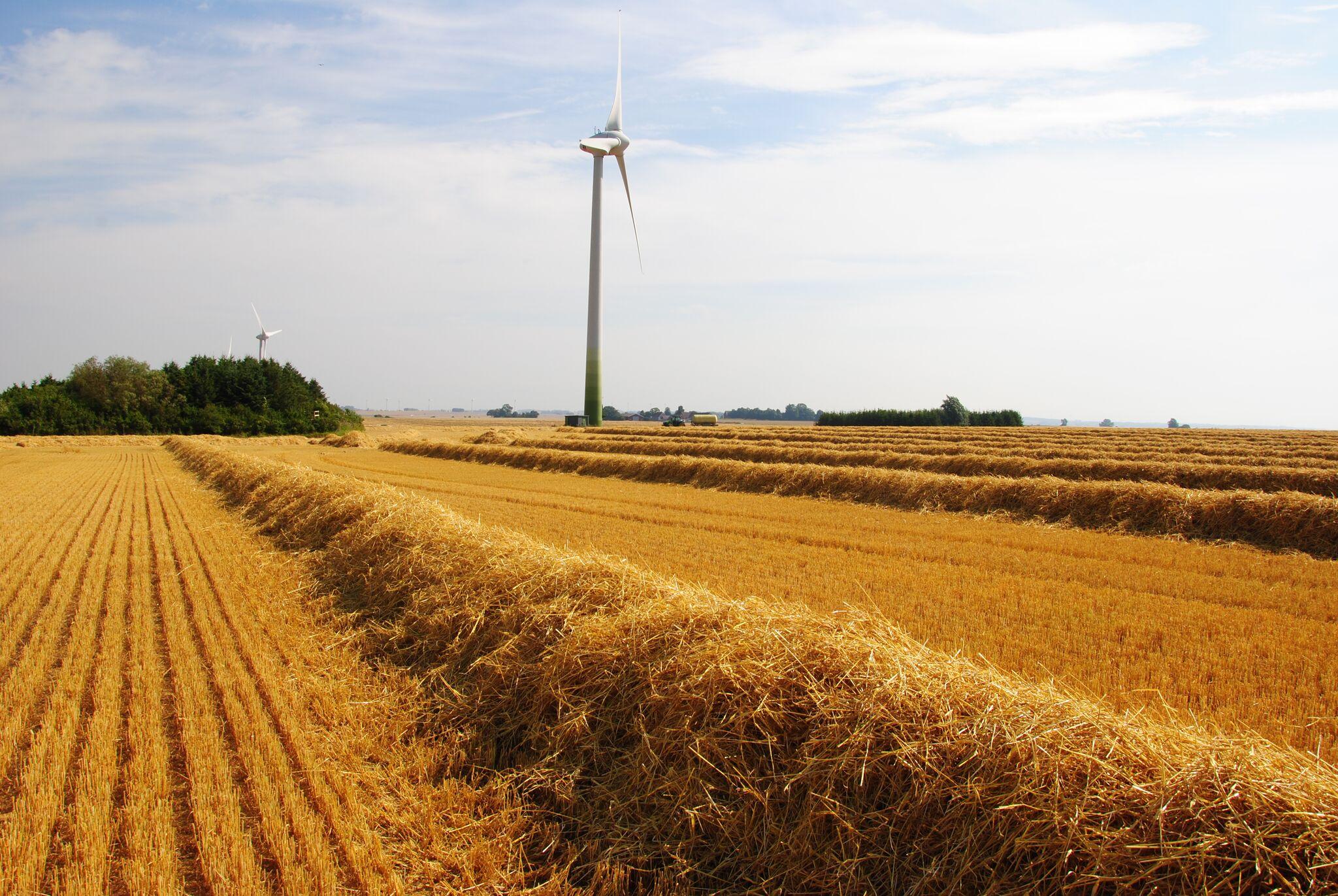 jordbruk7.jpeg
