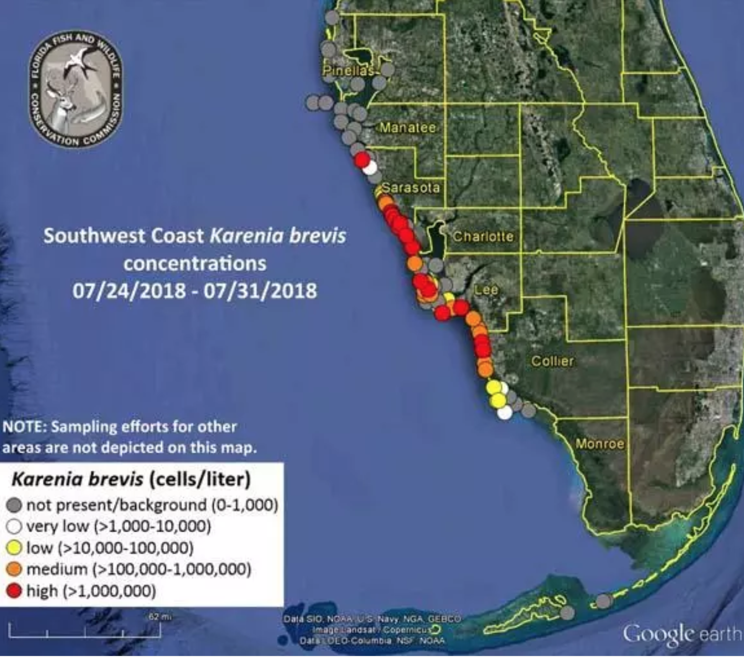 Red Algae Florida Map What is Florida's Red Tide? Cause Map of Contaminated Water