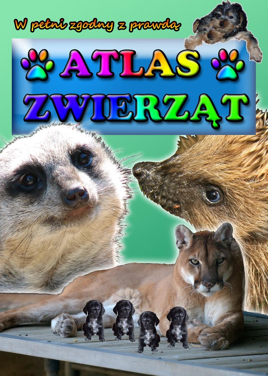 atlass.jpg