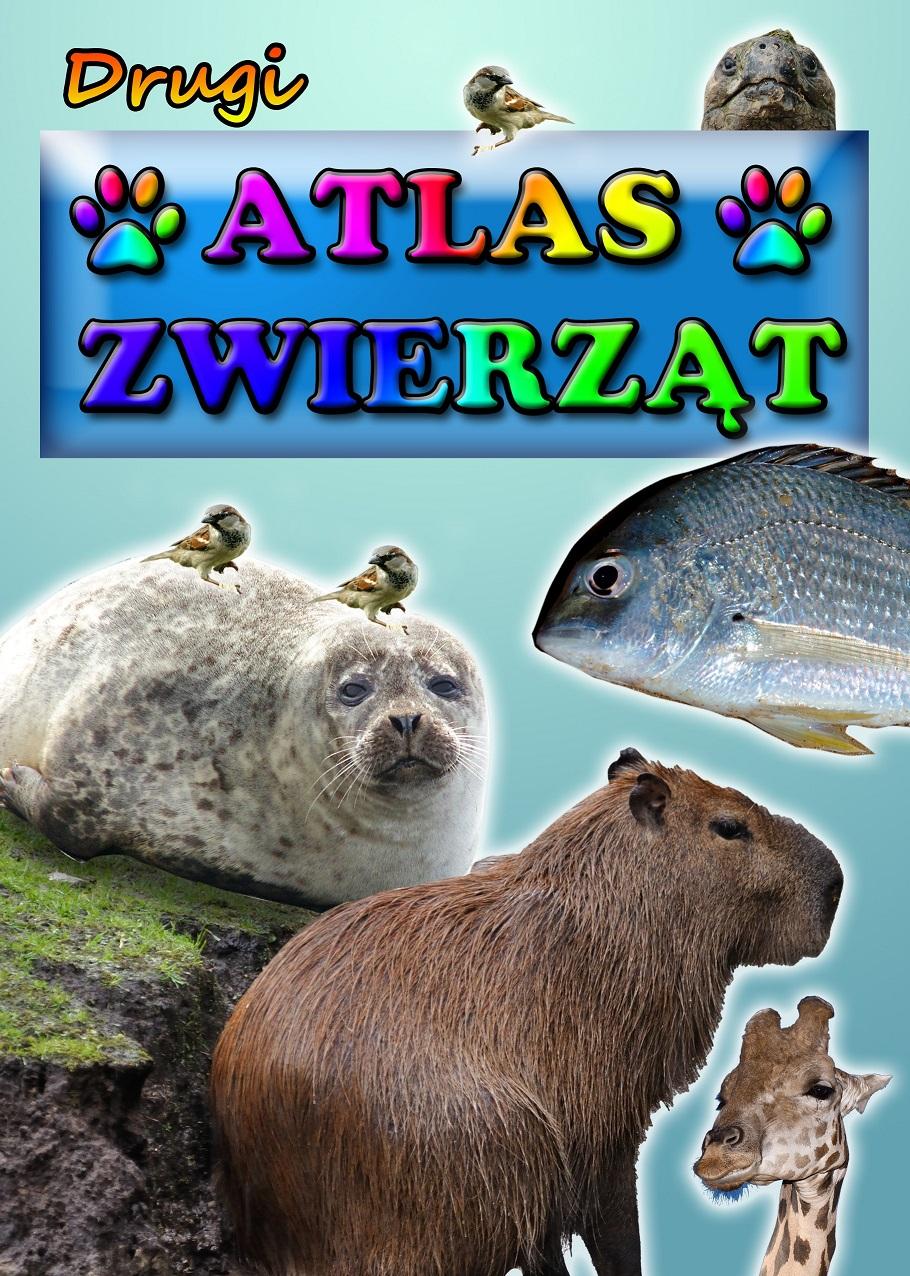 atlas_2.jpg