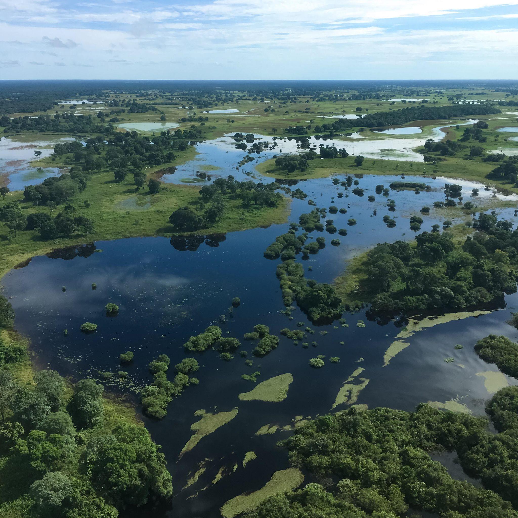 Pantanal Floods